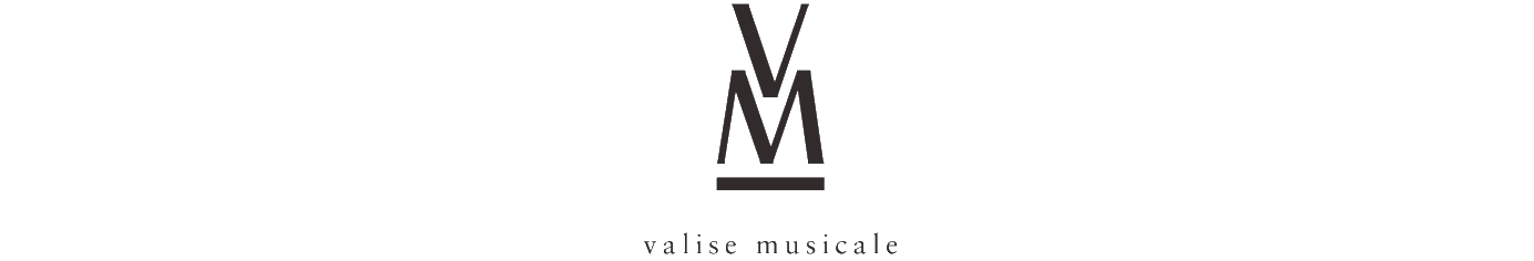 VALISE MUSICALE enceinte portable bluetooth